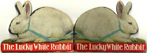 Book published by Valentine & Sons Ltd, probably in the early-1900s  -   The Lucky White Rabbit  - Outside of Book Covers