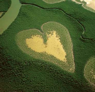 Heart of Voe  -  Photograph from the exhibition 'The Earth from the Air' at the Royal Botranic Gardens, Edinburgh