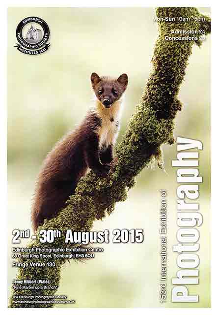 Poster for Edinburgh PHotographic Society's International Exhibition, 2015 featuring a photo by Jenny Hibbert, Wales, titled: 'Pine Marten up a Branch'