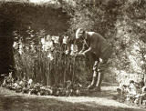 Photograph from the family of Horatio Ross  -  Garden  -  Which gardne is it?