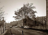 Horse Chestnut Tree in Brunswick Road. Looking to the SE towards Easter Road