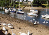 Cramond:  Boats and Swans on the River ALmond and the Old Ferry House
