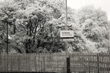 Infra-red Photo  -  Dalmeny Station  -  June 2014