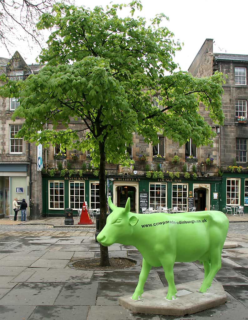 Edinburgh Cow Parade  -  2006  -  The Grassmarket