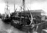 Sailing Trawlers at Granton Middle Pier