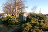 Police Box almost hidden in the bushes beside Glasgow Road, west of Maybury Junction
