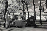Infrared photo  -  Free Lemonade in The Meadows