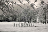 Infrared photo  -  Training in The Meadows
