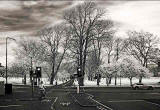 InfraRed photo   -  Looking from Marchmont Road, across Melville Drive to TRhe Meadows