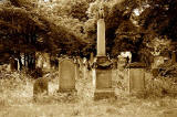 Warriston Cemetery  -  July 2010