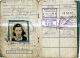 World War II  -  Travel Permit Card -  Pages