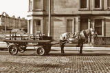 St Cuthbert's Milk Horse and Cart - Comely Bank, 1983