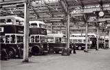 Edinburgh Buses  -  Shrubhill Works, possibly in the 1960s