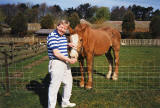 Ginger on the farm at Leven, Fife with John Tait