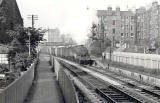 Railways  -  Freight Train at Merchiston Station, Edinburgh  -  1953
