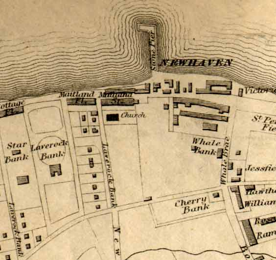 Newhaven map  -  1860
