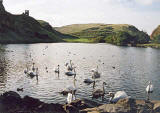 Photograph by Peter Stubbs  -  Edinburgh  -  November 2002  -  Looking to the south-west across St Margaret's Loch towards the ruin of St Anthony's Chapel in Queen's Park
