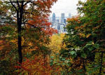 Looking towards the City from the north-eastern corner of Parc Mont-Royal, Montreal  -  Photo taken 17 October 2003